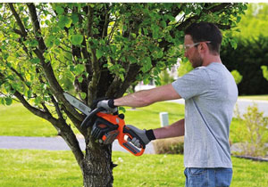 Black Decker LCS1020 20V Max Lithium Ion Chainsaw